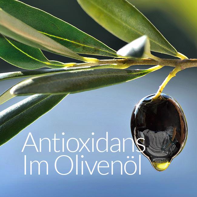Antioxidans Im Olivenöl